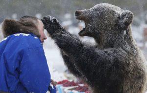クマはネネツ族にとって神様なので基本的に食べません。 しかし30年くらい生きた熊がごくたまに左手を上げて森から出現することがある ...